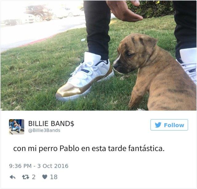 perro-pablo-1
