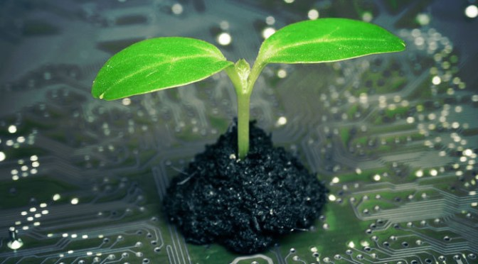Digitalization and Sustainability