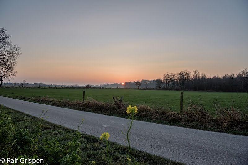 Eindelijk weer eens een mooie #zonsopkomst in #Limburg #Born #liefdevoorlimburg @limburginbeeld #limbrichterbos