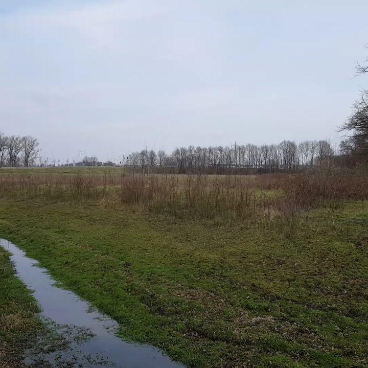 Zomaar een zonnige zondag in #Born #limbrichterbos #achterhethout #derollen #natuurmonumenten #liefdevoorlimburg #limburg #sunnyday