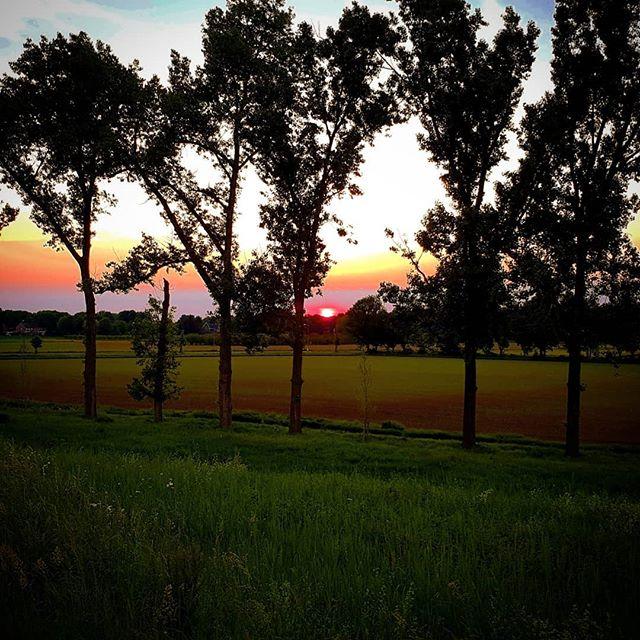 Zojuist gespot…..#zonsondergang #Born #A2 #nedcar #bornonline #borninbeeld @borninbeeld