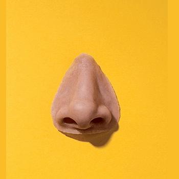 silicon nose