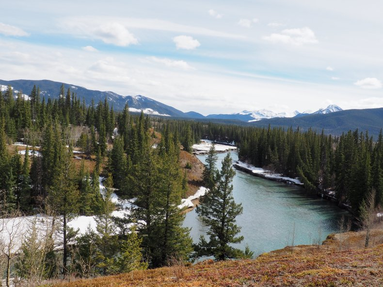 Easy Hikes Canmore - Flowing Water Interpretive Trail