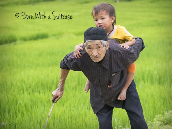 Sapa Papa