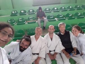 PSD (post-seminer disorder) Aikido seminer