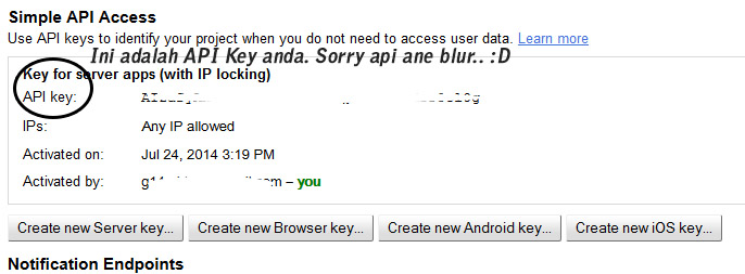 google api key finish