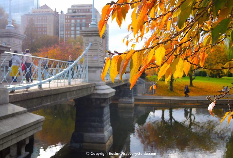 Boston Weather In November What To Expect Boston