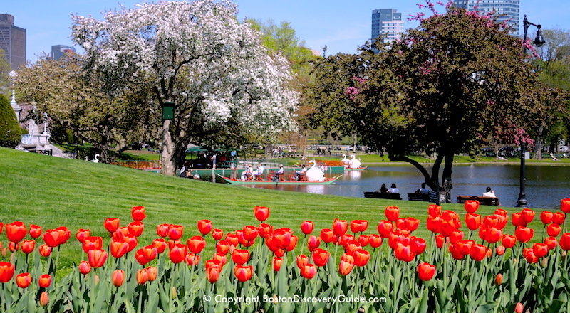 Mothers Day In Boston 2018 Things To Do