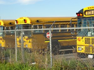 School Buses Behind Barbed Wire