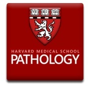 Harvard Medical School Department of Pathology