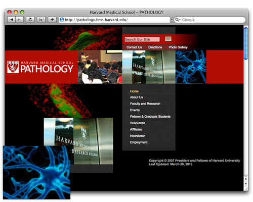 HMS Pathology - Homepage Design