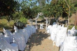 Botanical Park - Gardens of Crete: Wedding Area on citrus trees garden