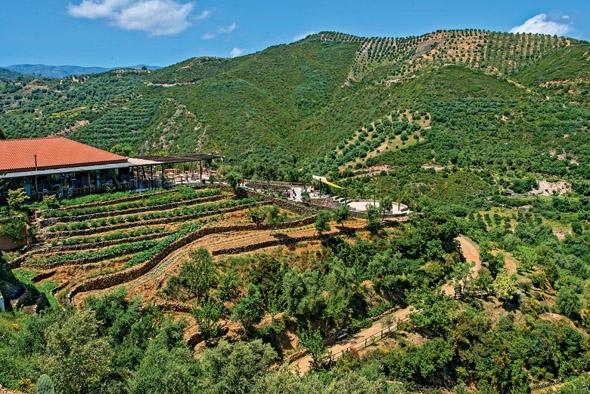 Βοτανικό Πάρκο και Κήποι Κρήτης- Σκορδαλού- Ομαλός- Χανιά