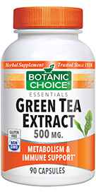 Green Tea Extract 500 mg 90 Capsules