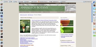 RockMelt Screenshot with Facebook bar on the left