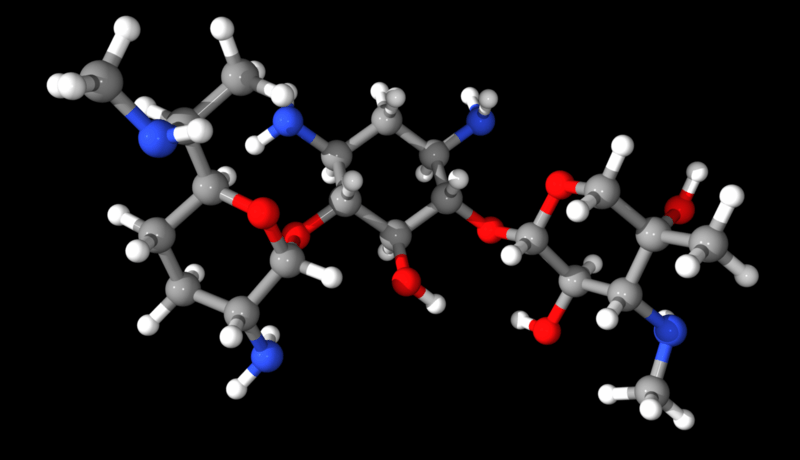 Gentamicin antibiotic: a 30S prokaryotic ribosome inhibitor (wiki)
