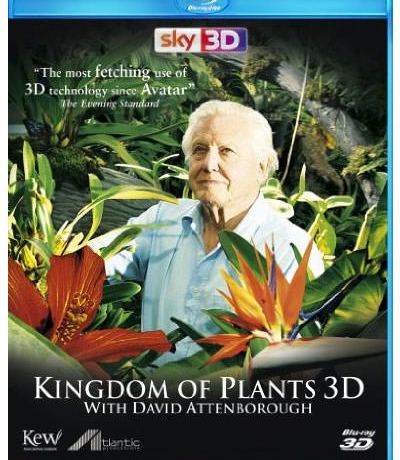 Kingdom of Plants 3D cover