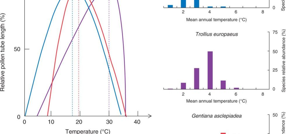 Differences in the temperature requirements for PTG of three species (Campanula alpina, Trollius europaeus and Gentiana asclepiadea) occurring in climatically contrasting habitats.