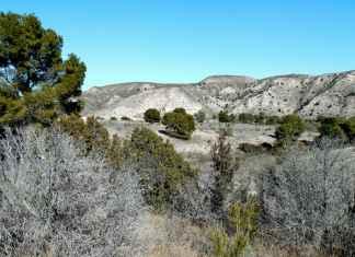 Spanish scrubland.