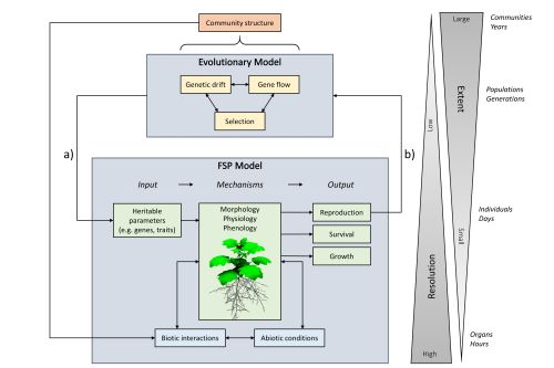 summary of the processes and scale of evolutionary FSP modelling