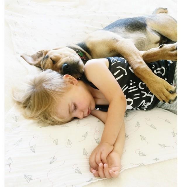 crianca-e-cachorro-dormindo-013