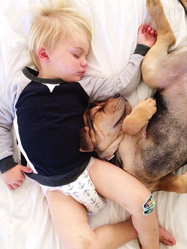 crianca-e-cachorro-dormindo-03