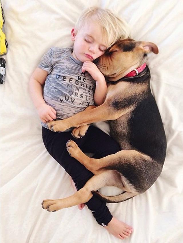 crianca-e-cachorro-dormindo-04