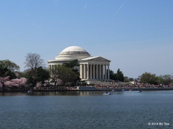 Jefferson Memorial Superimpose on Sakuras.