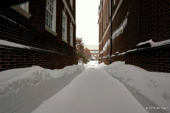 Along a plowed alley.