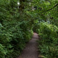 Portland, OR: Tryon Creek State Natural Area