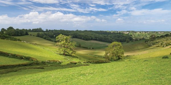 View from Botley Hill Farmhouse