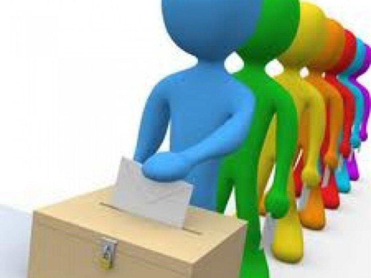 Imagini pentru poze cu votare