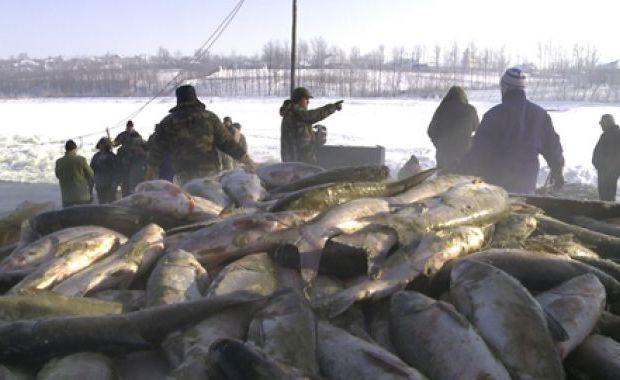 pescuit sub gheata