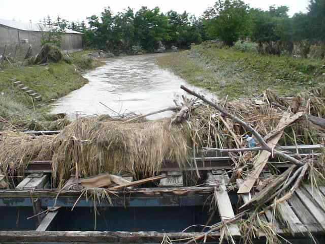 inundatii paraul buhai- dorohoi- botosani