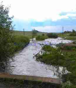 inundatii-parau-pomarla-botosani