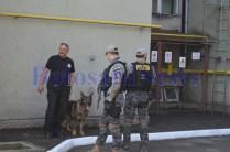 mascati caine politie