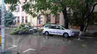 masini avariate de copaci rupti- botosani