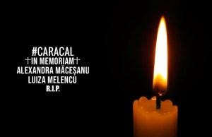 piesa rapp in memoriam Alexandra Macesanu- Botosani 2019