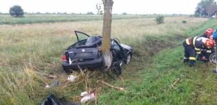 masina in copac, stiri, accident (2)