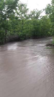 draguseni, inundatii3 (3)