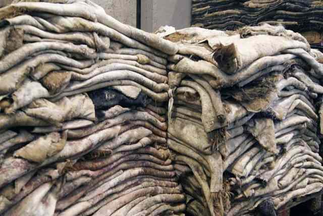牛革の原皮
