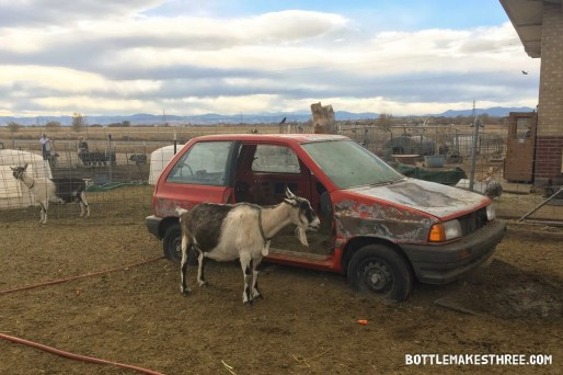 Happy Thanks-Living at Broken Shovels Farm (Henderson, Colorado) | BottleMakesThree.com