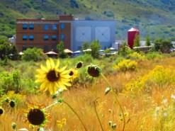 Durango 002-20130906