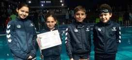 البطولة الجهوية  للسباحة بتيسمسيلت نتائج اولية مشجعة لنادي دلافين بوسعادة