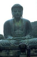 beau bouddha géant
