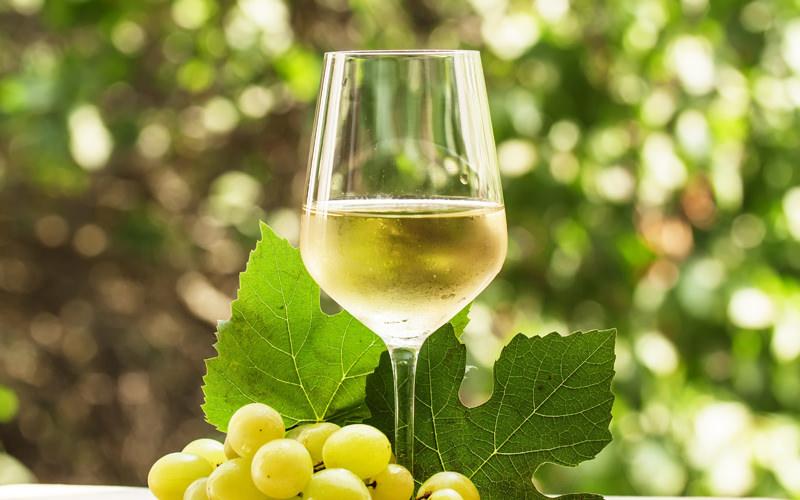 Whine & Wine: Whites
