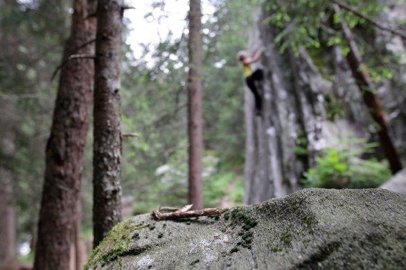 Magic Wood Sommer 2015 (188)