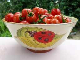 egouttoir-legumes-ceramique-coccinelle