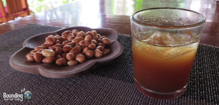 Taruna Homestay - Pemuteran, Bali - Arak and Peanuts