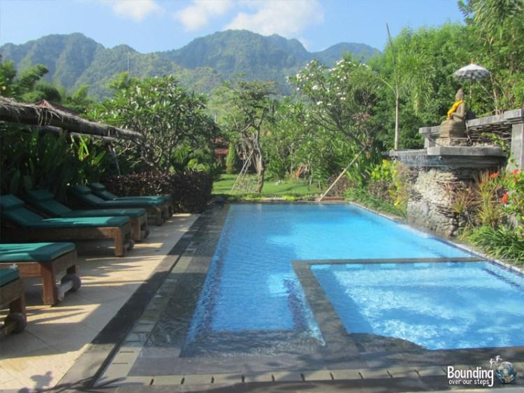 Taruna Homestay - Pemuteran, Bali - Pool